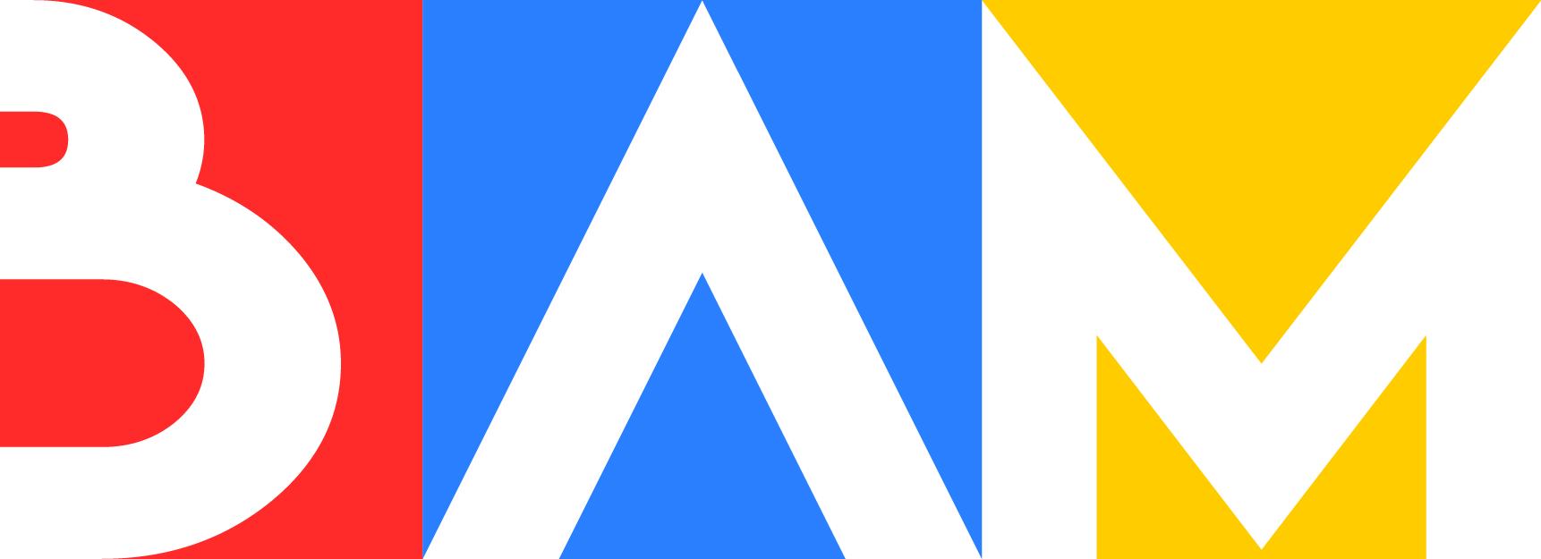 BAM-logo_-_transparent_1